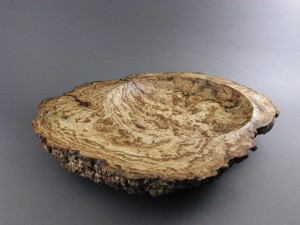 JRutty-pine_burl_1